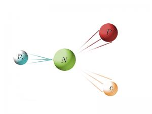 L'interazione debole di un antineutrino elettronico con un neutrone all'interno di un nucleo atomico può spingerlo a decadere in un protone e un elettrone. Credit Il Poliedrico.